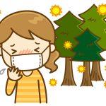 べにふうき茶で花粉症対策その効果は?即効性や鼻水に効くの?